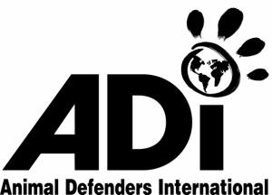 ADI logo 05 MONO small
